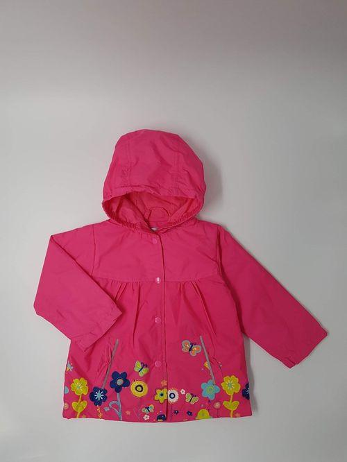 Куртик (охид)