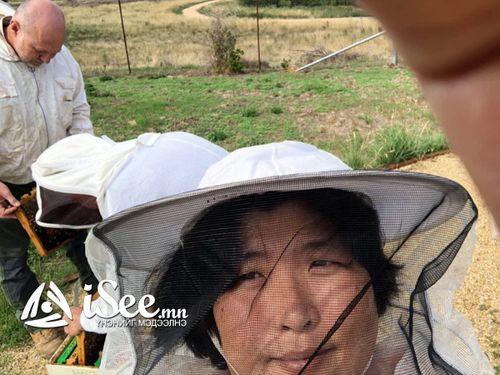 Ибукуро Томоко: Дэлхийн хаана ч байхгүй өвөрмөц амттай зөгийн балыг Монголоос гарган авах боломжтой