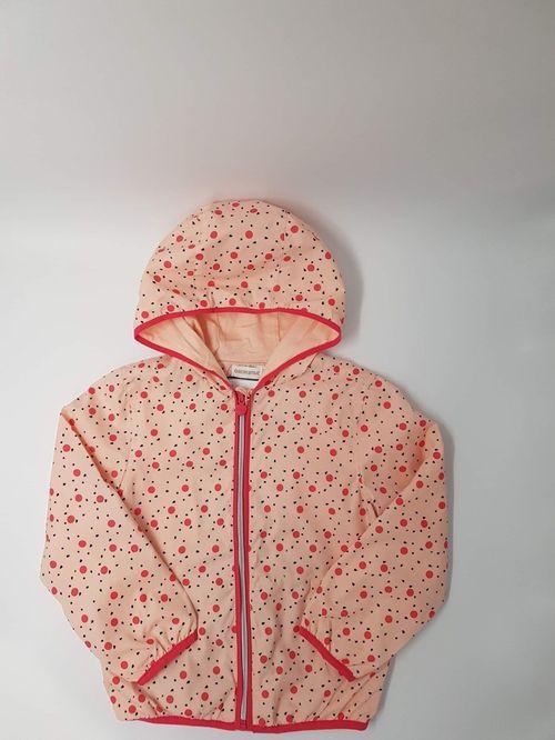 Хавар намар-зуны куртик