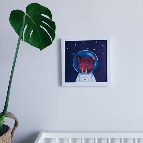 Mazaalai the Astronaut
